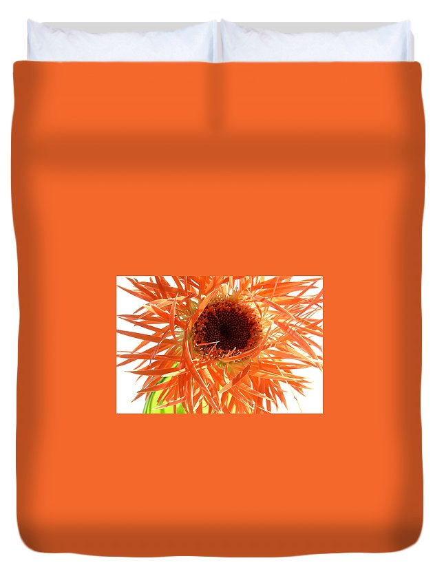 Gerbera Photographs Duvet Cover featuring the photograph 0692-1 by Kimberlie Gerner