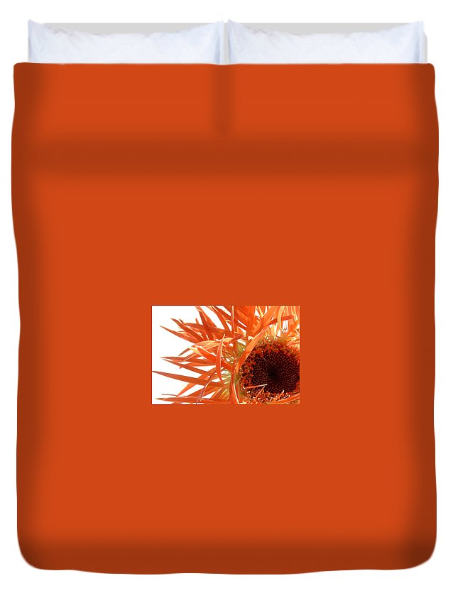 Gerbera Photographs Duvet Cover featuring the photograph 0692c-003 by Kimberlie Gerner
