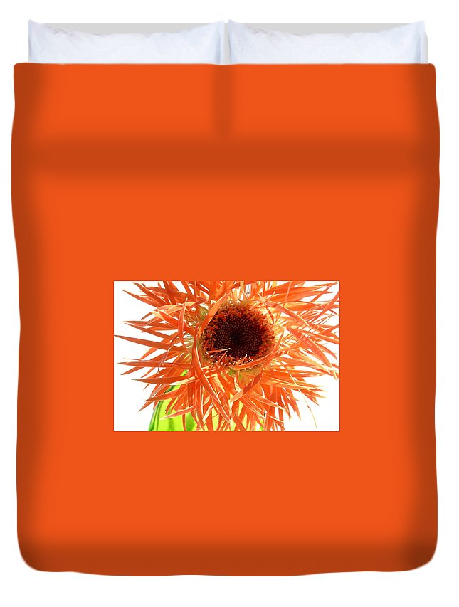 Gerbera Photographs Duvet Cover featuring the photograph 0692c-005 by Kimberlie Gerner