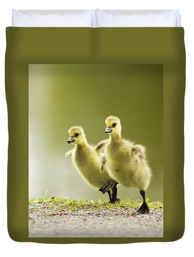 Canada Duvet Cover featuring the photograph 1 2 3 Go by Mircea Costina Photography