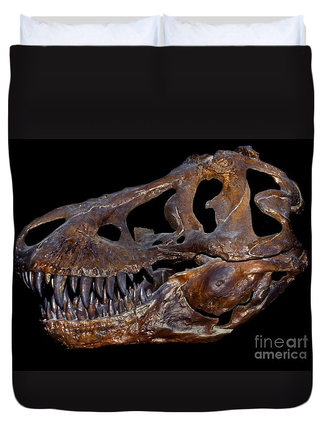 Black Background Duvet Cover featuring the photograph A Genuine Fossilized Skull Of A T. Rex by Mark Stevenson