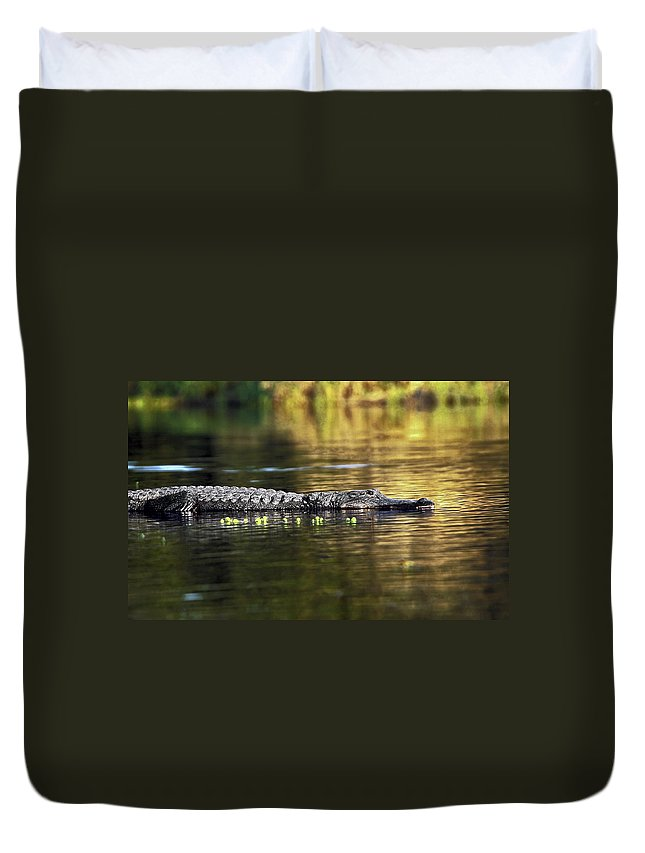 American Alligator Partly Submerged Duvet Cover featuring the photograph American Alligator by Sally Weigand