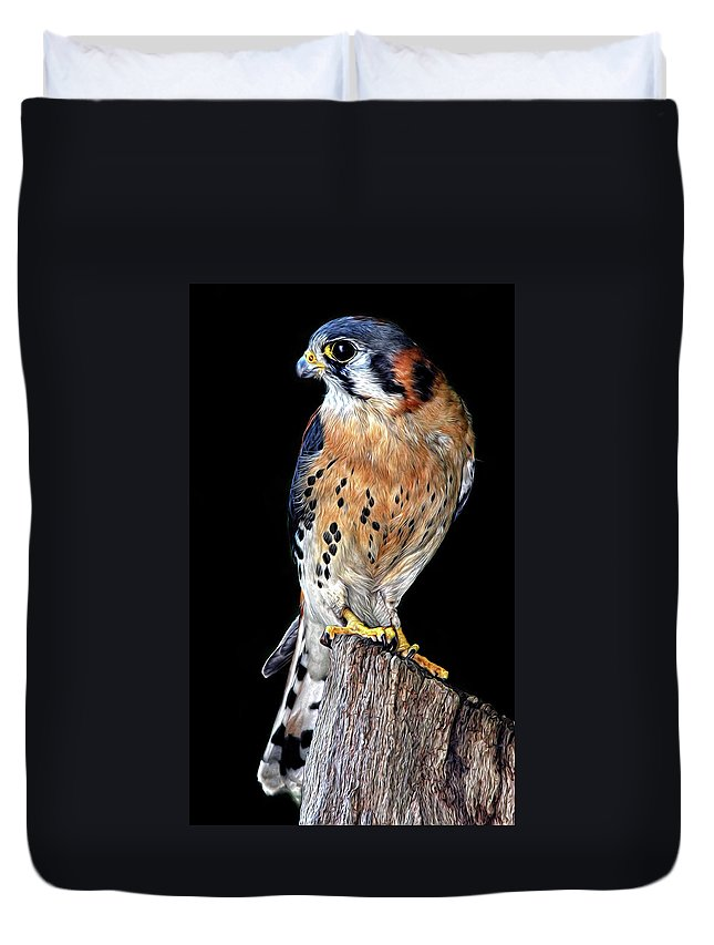American Kestrel Duvet Cover featuring the photograph American Kestrel by Dave Mills