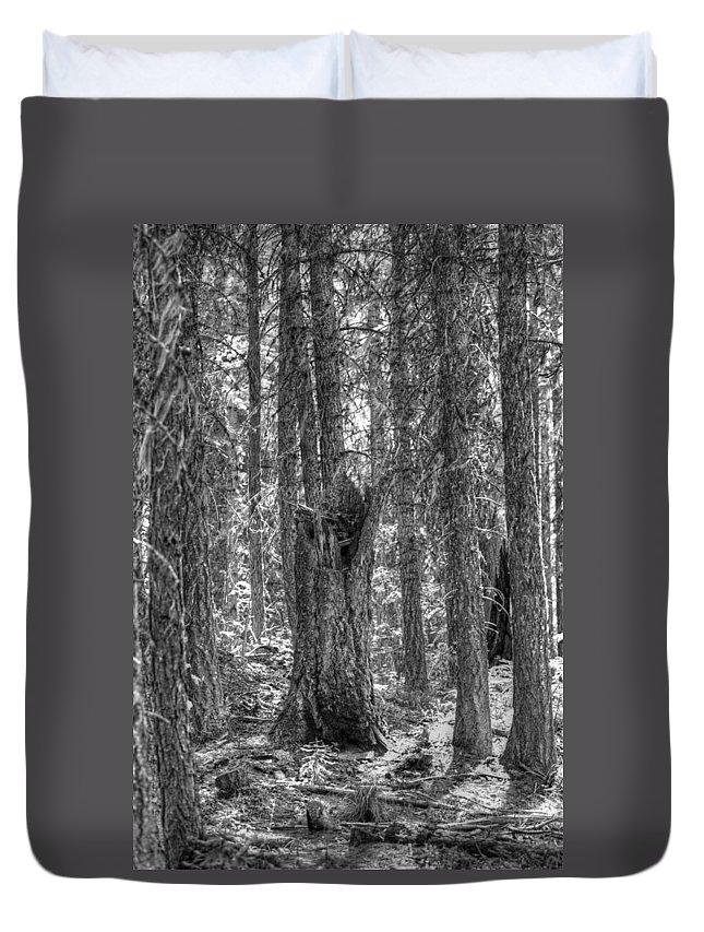Tree Duvet Cover featuring the photograph Back To Nature by One Rude Dawg Orcutt