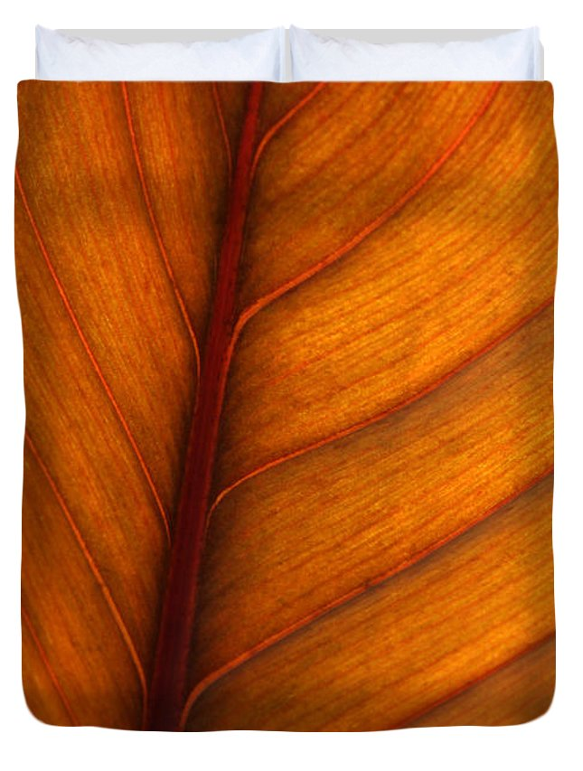 Leaf Duvet Cover featuring the photograph Backlit Leaf by Sabrina L Ryan