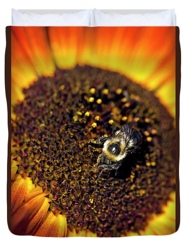 Helianthus Annuus Duvet Cover featuring the photograph Bee And Sunflower by John Greim