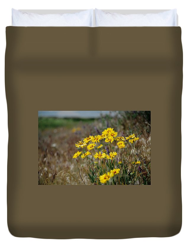 Blanket Flower Duvet Cover featuring the photograph Blanket Flower by One Rude Dawg Orcutt