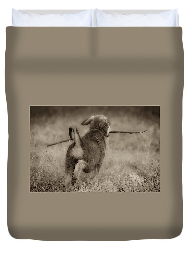 Fetch Duvet Cover featuring the photograph Classic by Kim Henderson