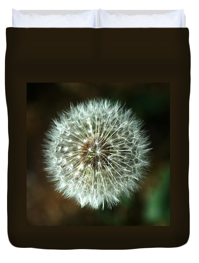 Dandelion Duvet Cover featuring the photograph Dandelion Seed Head by Chris Day