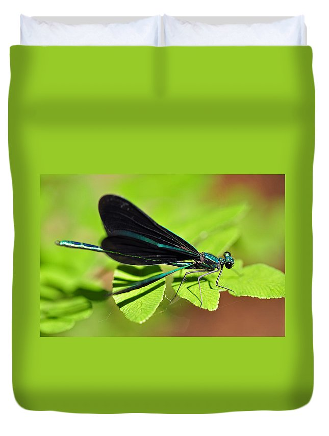 Dragonfly Duvet Cover featuring the photograph Dragonfly by Glenn Gordon