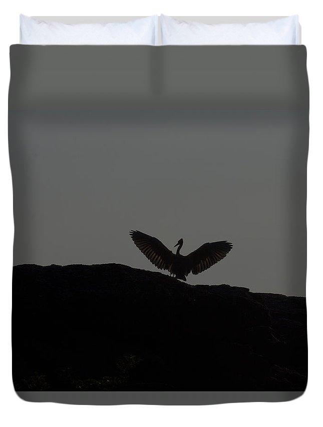 Egret Duvet Cover featuring the photograph Egret Silhouette by Douglas Barnard