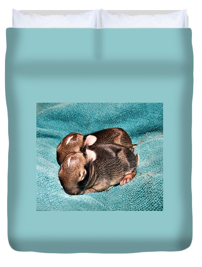 Baby Duvet Cover featuring the photograph Family by Art Dingo