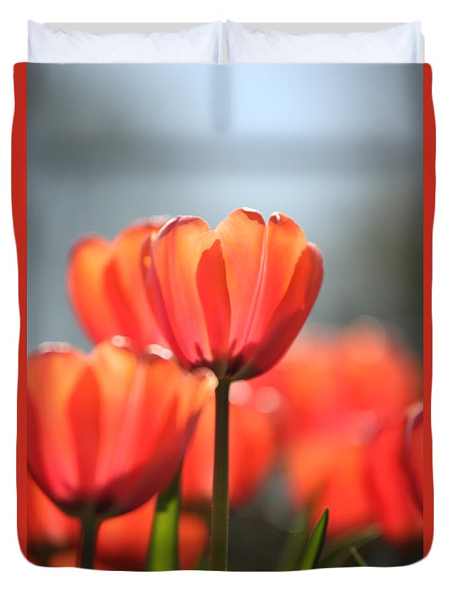 Flower Duvet Cover featuring the photograph Floral 34 by Carol Ann Thomas