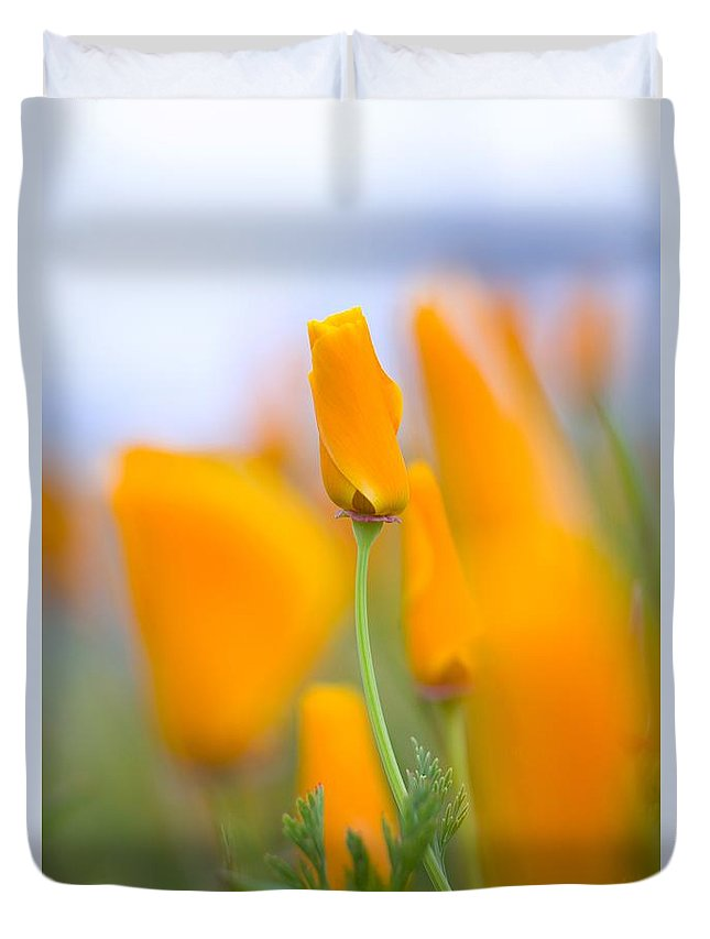 Color Duvet Cover featuring the photograph Furled Poppy by Craig Tuttle