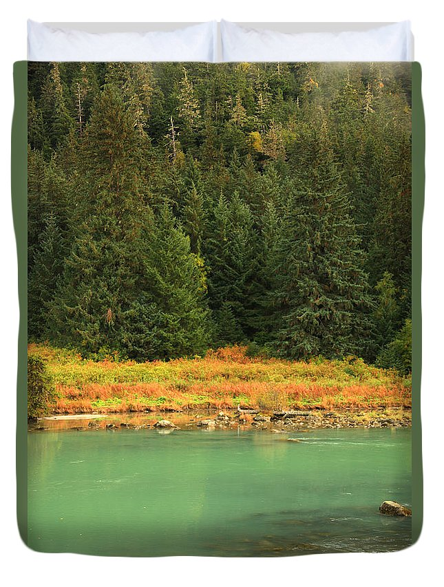 Light Duvet Cover featuring the photograph Grizzly Bear Fishing In Chilkoot River by Robert Postma