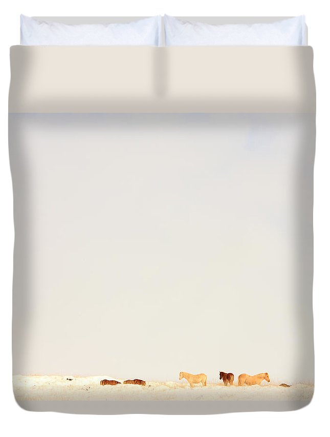 Light Duvet Cover featuring the photograph Icelandic Horses In Snow Covered Field by Robert Postma
