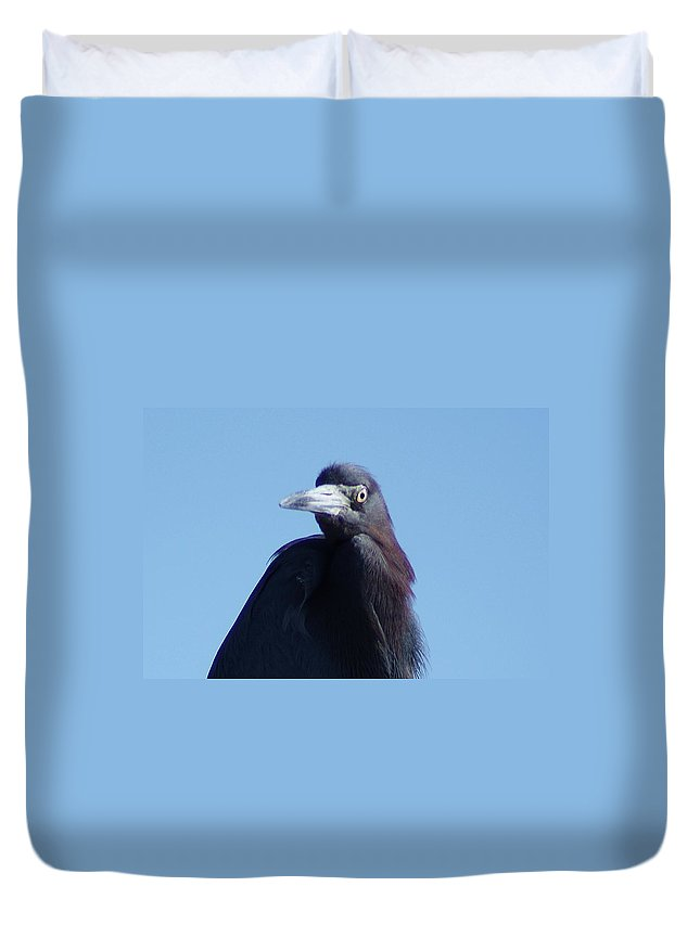 Little Blue Heron Duvet Cover featuring the photograph Little Blue Heron II by Joe Faherty