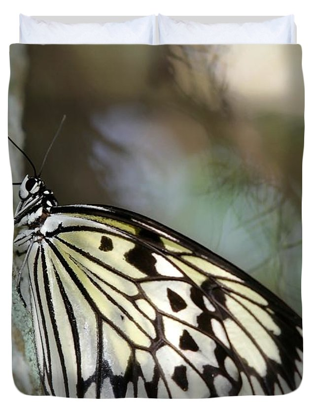 Butterfly Duvet Cover featuring the photograph Magical Butterfly by Sabrina L Ryan