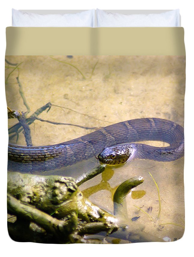 Brian Wallace Duvet Cover featuring the photograph Northern Water Snake by Brian Wallace