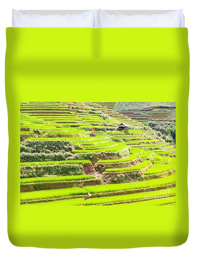 Paddy Duvet Cover featuring the photograph Paddy Rice Fields by MotHaiBaPhoto Prints