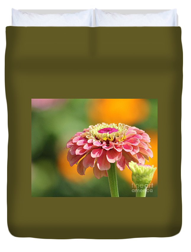 Flowers Duvet Cover featuring the photograph Pink Zinnia by Jack Schultz