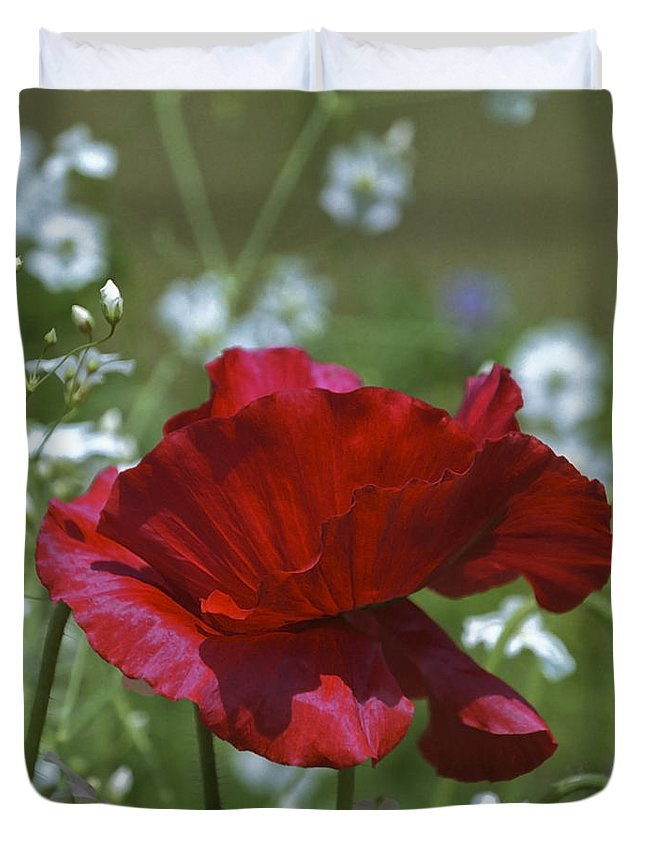 Flowers Duvet Cover featuring the photograph Poppy by Patrick Kessler