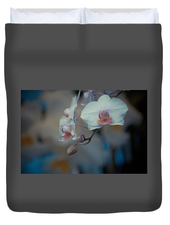 Flowers Duvet Cover featuring the photograph Pretty Pastels by Trish Tritz
