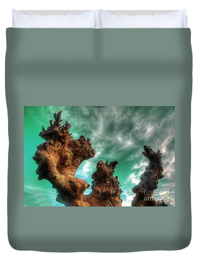 Abstract Duvet Cover featuring the photograph Pruned by Rob Hawkins