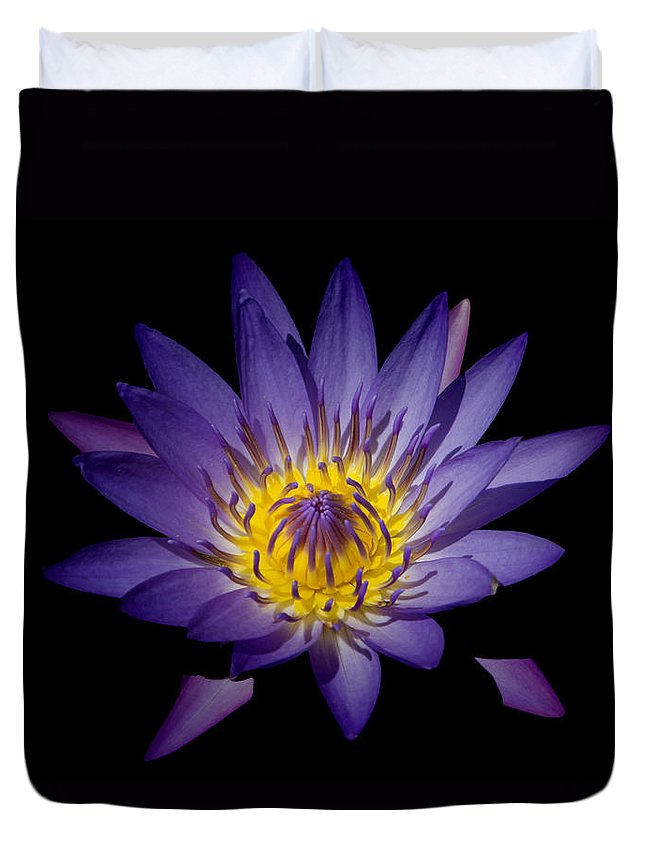 Lily Duvet Cover featuring the photograph The Color Purple by Douglas Barnard