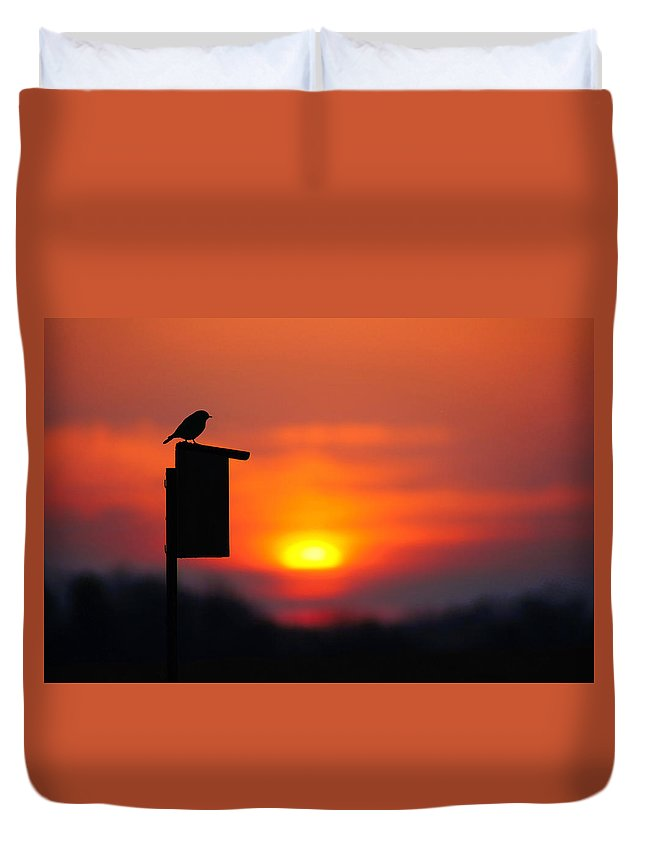 Bird Duvet Cover featuring the photograph The Early Bird by Bill Pevlor