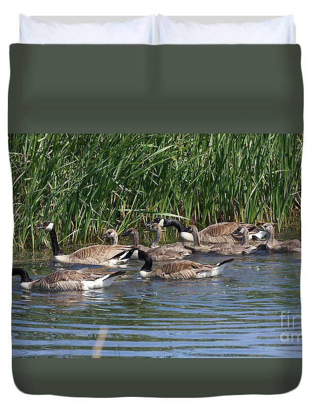 Goose Duvet Cover featuring the photograph The Great Escape by Lori Tordsen