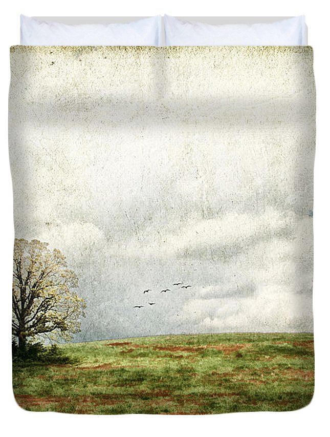 Aged Duvet Cover featuring the photograph The Lone Tree by Darren Fisher