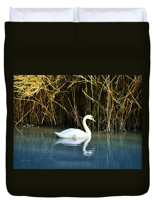 The White Swan Duvet Cover featuring the photograph The White Swan by Bill Cannon