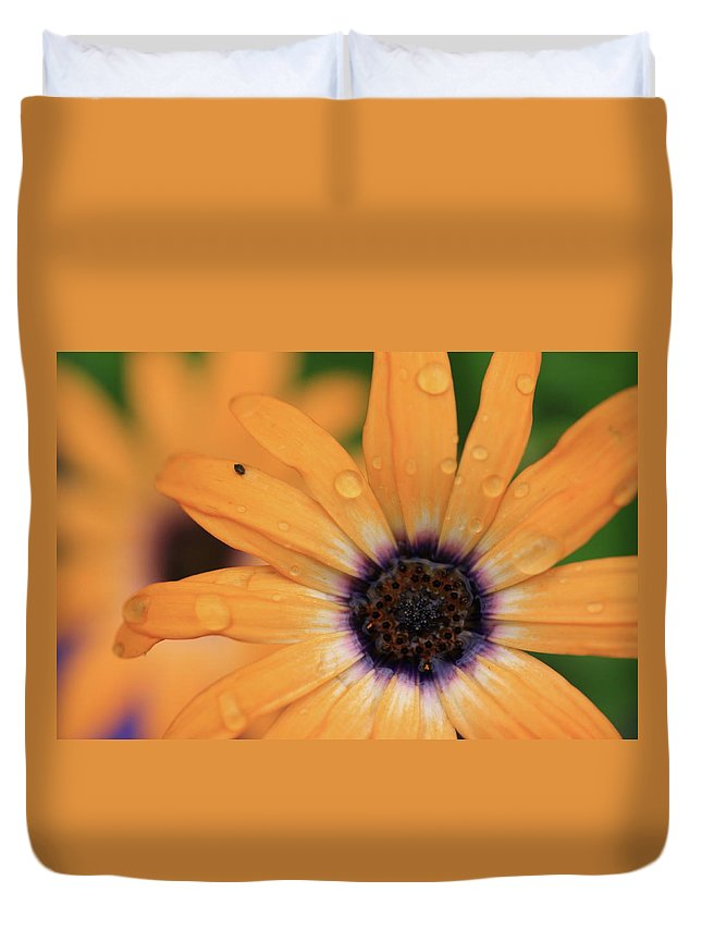 Flowers Duvet Cover featuring the photograph Untitled by Rick Berk