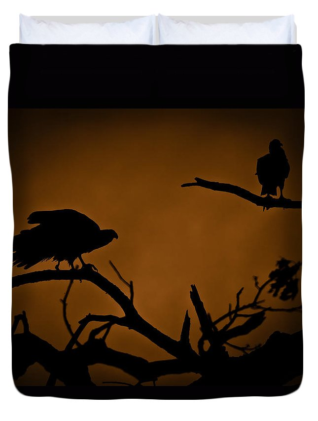 Vultures Duvet Cover featuring the photograph Watcher by Kim Henderson