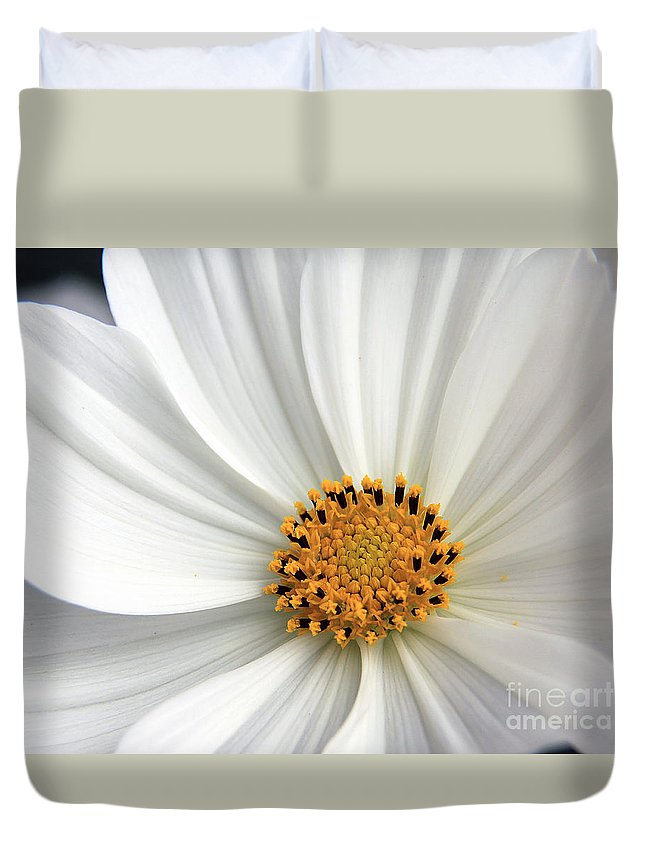Flowers Duvet Cover featuring the photograph White Cosmos by Jack Schultz