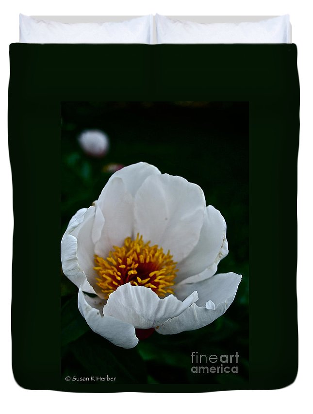 Plant Duvet Cover featuring the photograph White Petals by Susan Herber