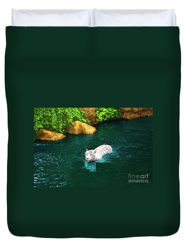 Animals Duvet Cover featuring the photograph White Tiger by MotHaiBaPhoto Prints