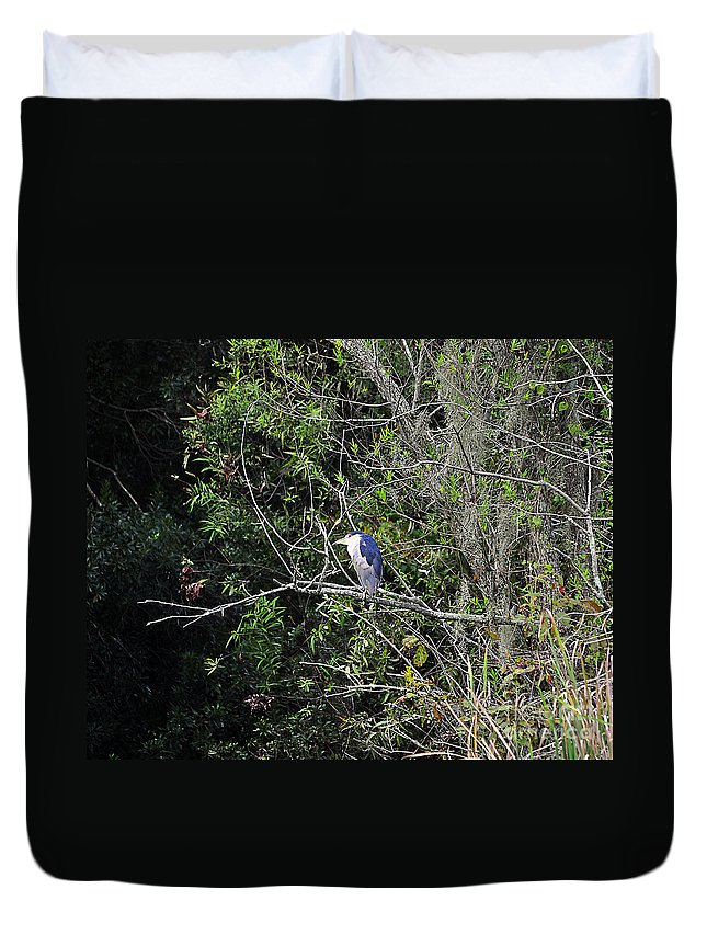 Heron Duvet Cover featuring the photograph Yellow-crowned Night-heron by Al Powell Photography USA