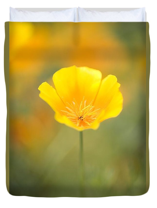 Cheerful Duvet Cover featuring the photograph Yellow Poppy Flower, Mount Hood by Craig Tuttle