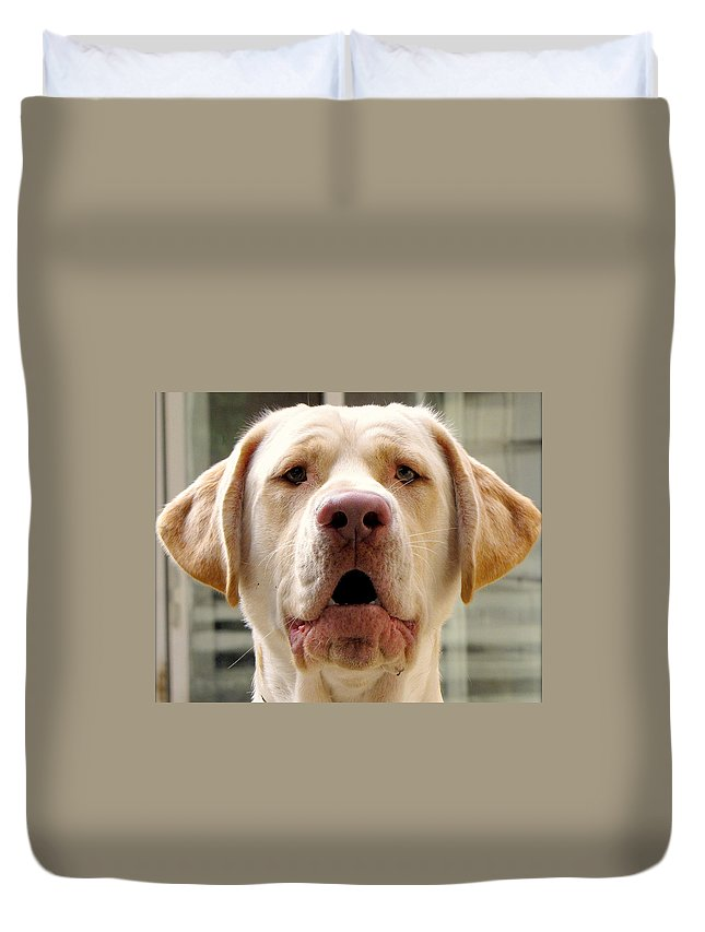 Dog Duvet Cover featuring the photograph Yodelling Luke by Lori Pessin Lafargue