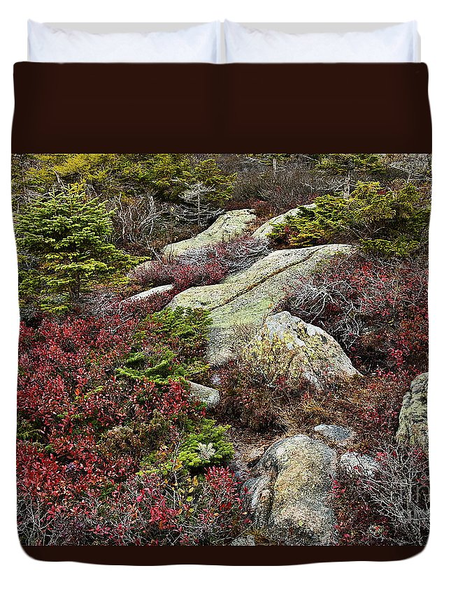Acadia Duvet Cover featuring the photograph Acadia National Park by John Greim