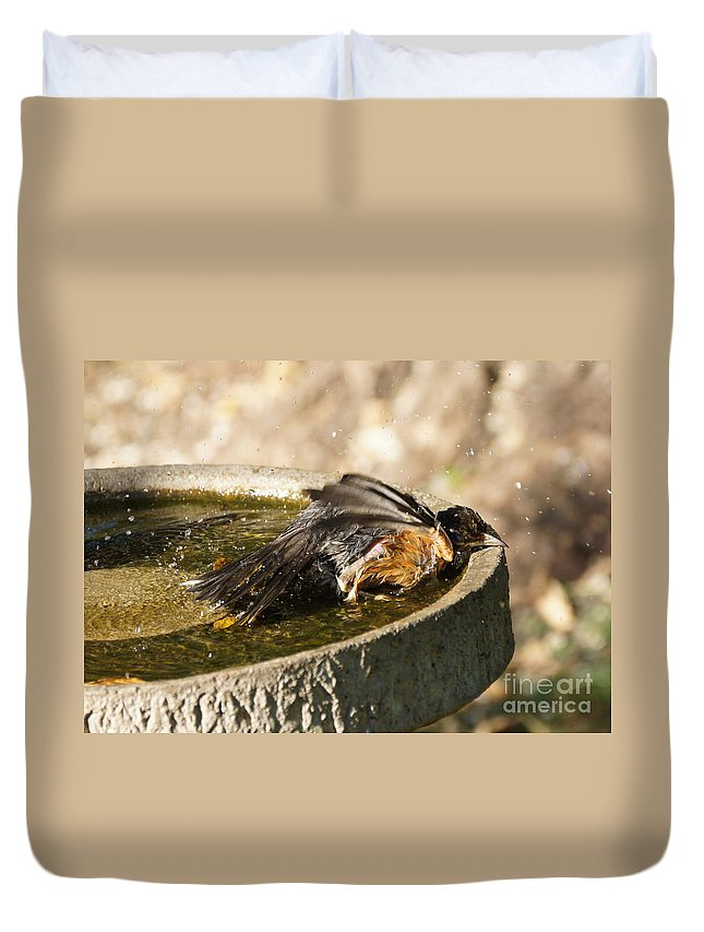 Robin Duvet Cover featuring the photograph Bird Bath Fun Time by Lori Tordsen