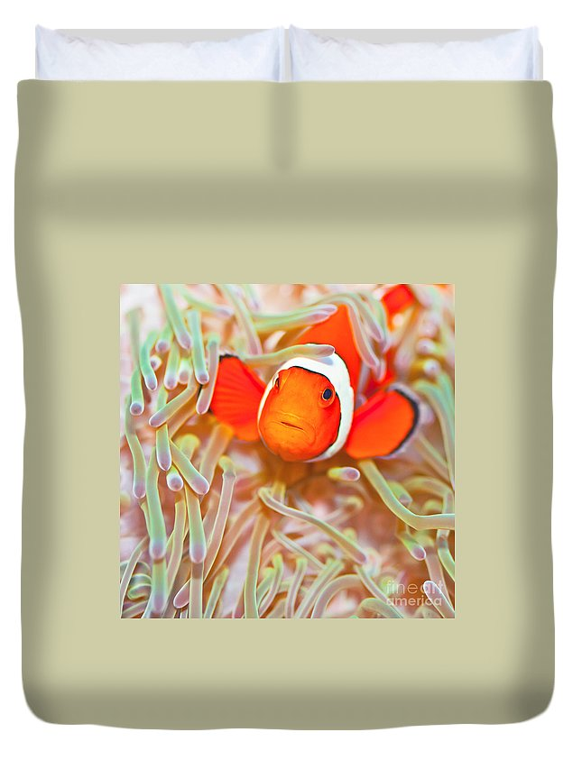 Amphiprion Ocellaris Duvet Cover featuring the photograph Clownfish by MotHaiBaPhoto Prints