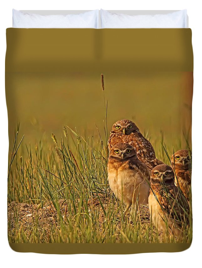Light Duvet Cover featuring the photograph Digitally Enhanced Image With Painterly by Robert Postma