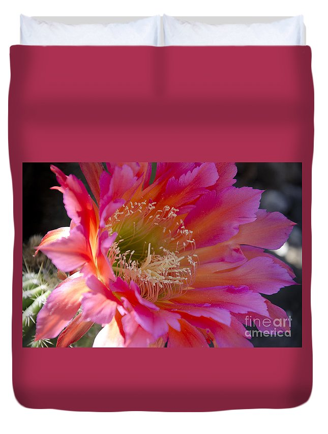 Cactus Duvet Cover featuring the photograph Hot Pink Cactus Flower by Jim And Emily Bush