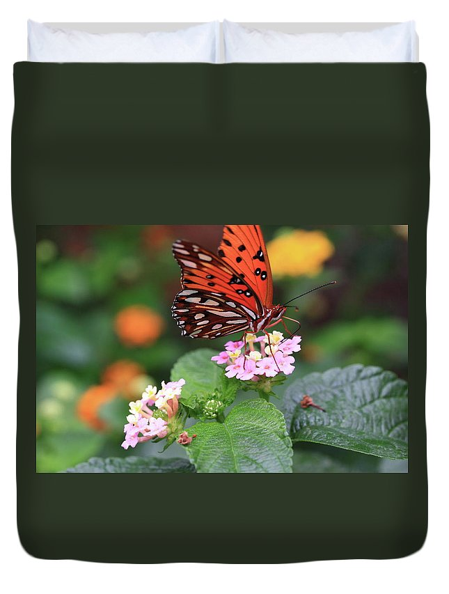 Butterfly Duvet Cover featuring the photograph Untitled by Rick Berk