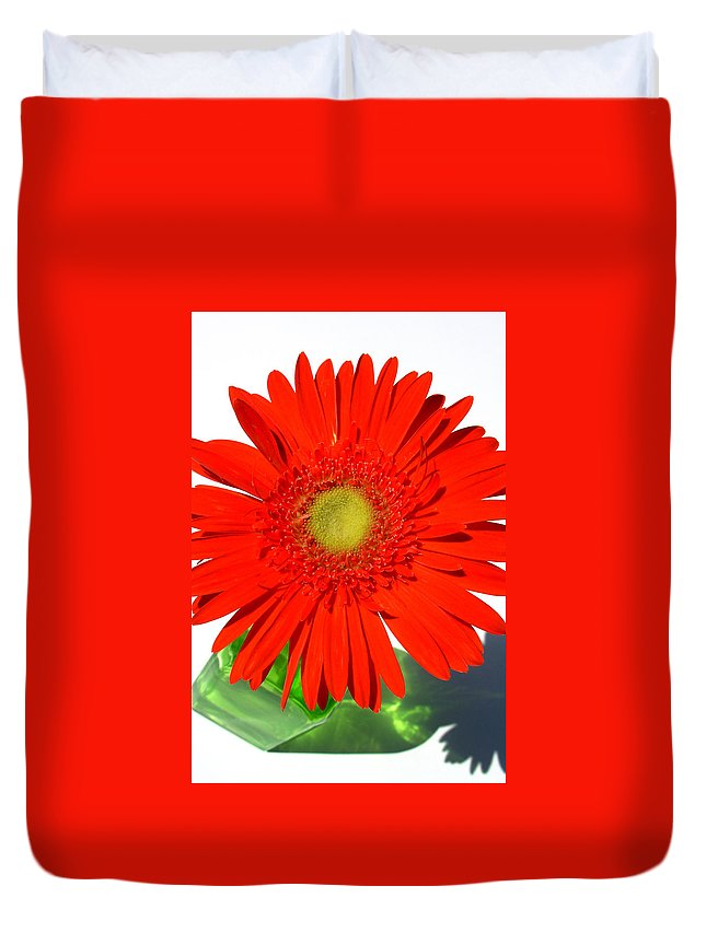 Gerbera Photographs Duvet Cover featuring the photograph 2003a1-2 by Kimberlie Gerner