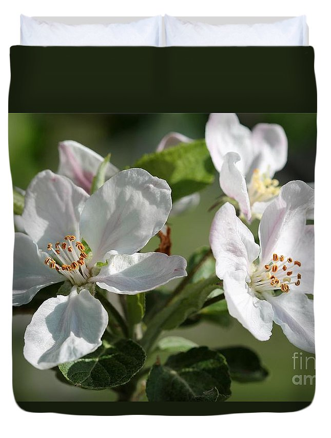 Apple Duvet Cover featuring the photograph Apple Blossom by J McCombie