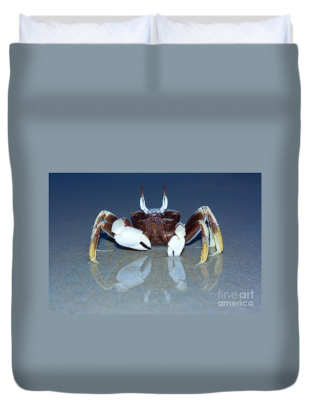 Animal Duvet Cover featuring the photograph Crab On The Tropical Beach by MotHaiBaPhoto Prints
